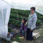 zeynep-çilek-bahçesi (1)