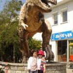zeynep-sapanca-hayvanat-bahcesi (3)