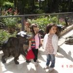 zeynep-sapanca-hayvanat-bahcesi (6)