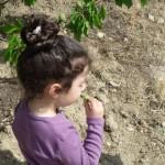 zeynep-zeytinlikte (8)